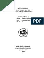 +GENETIKA_Laporan Drosophila1 (2).doc