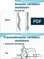 traumatisme_vertebromedulare