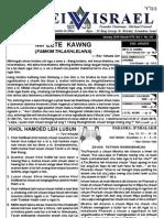 Bulletin (30.1.2010)