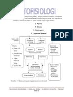 Patogenesis HAP Pada Prinsipnya Sama Dengan Pneumonia Komuniti