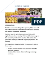 Agriculture Sector in Pakistan