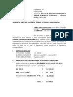 LIQUIDACION.docx