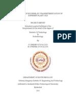 BT5 DOC Biodiesel Report