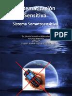 Clase 13. Sistematización Sensitiva