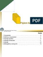 7.-Fisiere-text.pdf