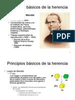 Principios Basicos de La Herencia 1