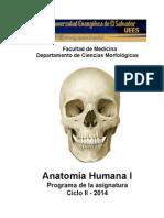 ANATOMÍA HUMANA I DOCTORADO EN MEDICINA Metodología Didáctica.doc