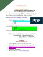 hemoglobina glicozilata.doc