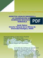 ASPECTOS LEGALES BIODIVERSIAD 2004 II.ppt