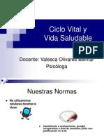 Ciclo Vital y Vida Saludable Presentación Programa