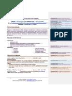 Formato de hoja de vida .pdf