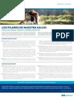 Boletin 04 - Los Pilares de Nuestra Salud Hacia Una Vida Consciente