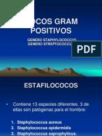2cocosgrampositivos-140105170237-phpapp01.pdf
