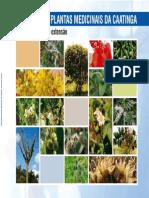 Catalogo Plantas Medicinais BBB-13-2011