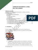Tipografía y RAE. Accesibilidad.pdf