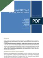Documento Politica Ambiental y Patrimonio Natural 8 de Julio