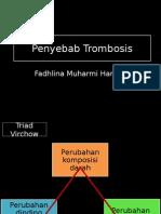 Penyebab Trombus