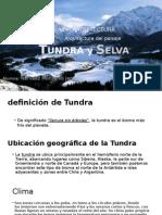 Selva y Tundra