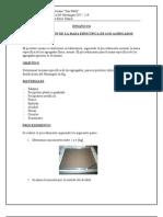 ensayo 6 - DETERMINACIÓN DE LA MASA ESPECÍFICA DE LOS AGREGADOS