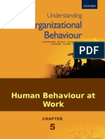 Human Behaviour at work.pps.ppsx