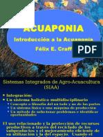acuaponia-1227536712413962-9