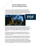 La contaminación lumínica afcta negativamente al crecimiento de las plantas.pdf