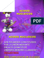 230487854 Acidos Nucleicos Ppt