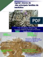 Sistemática Vegetal Chaves de Classificação Das Principais Famílias de Interesse Farmacêuticofinal (1)