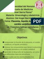 Placenta, Liquido Amniotico, Cordon Umbilical