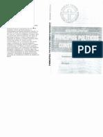 Princípios Políticos Constitucionais