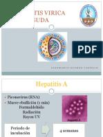 hepatitisviricaaguda-121115222107-phpapp01