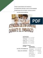 455 Atencion de Enfermeria Durante EL EMBARAZO