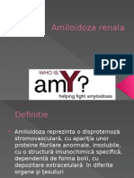 New Microsoft PowerPoint Presentation amiloidoza