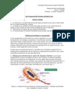 Guía Biología Unidad cero 2do Medio