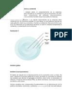 Analisis Macroeconomico y Sectorial