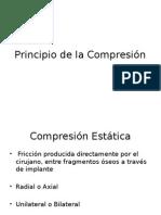 Principio Biomecanico