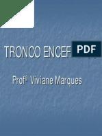 TRONCO_ENCEFALICO_AULA_4.pdf