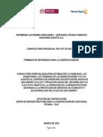 Términos de Referencia de Consultoría Especializada San Andres 09032015.doc