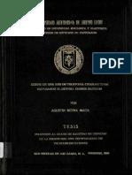 tesis tdma.PDF