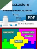 toxicología (4) - Biotransformación de tóxicos.pptx