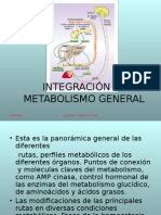 Integración Al Metabolismo General