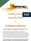 Synergy Company Profile