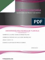 MICROECONOMÍA_ELASTICIDAD