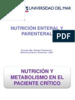 Respuestametablicanutricionalenelpacientecrtico 100404145818 Phpapp02