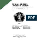 JOURNAL CRITISM.docx