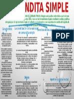 SOCIEDAD EN COMANDITA SIMPLE 2.pptx