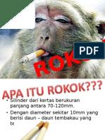 Penyuluhan Tentang Rokok