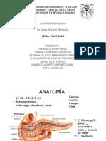 Pancreas Patologias