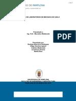 INFORMES DE SUELOS.docx