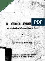 Reducción_Fenomenológica_San_Martín